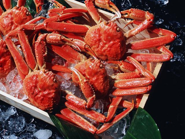 [新生活様式]イタリアンディナーバイキング~蟹も食べ放題!!~|ディナー|レンブラントホテル東京町田【公式】