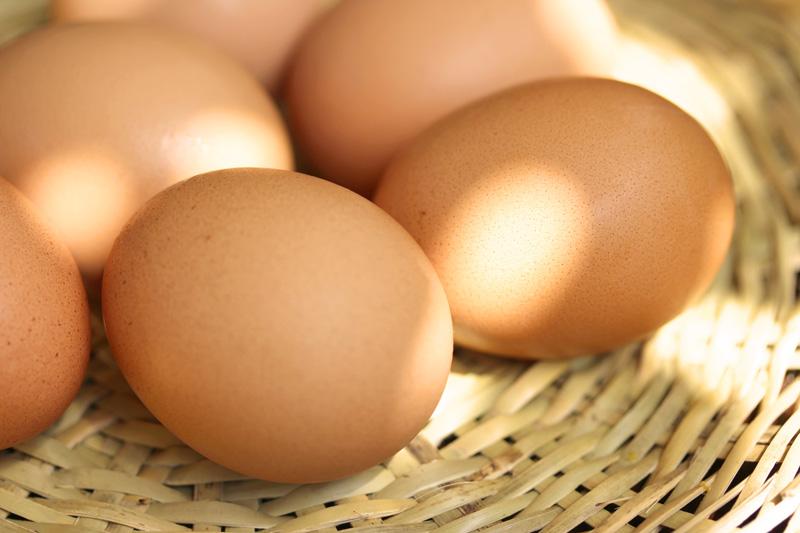 一押し|地元産たまごの卵かけご飯|朝食のご案内|レンブラントホテル厚木【公式】レンブラントグループホテル