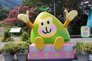 高崎山自然動物園|周辺観光|レンブラントホテル大分【公式】レンブラントグループホテル