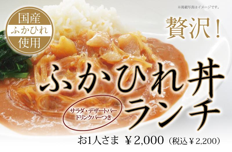 【期間限定】贅沢ふかひれ丼ランチ